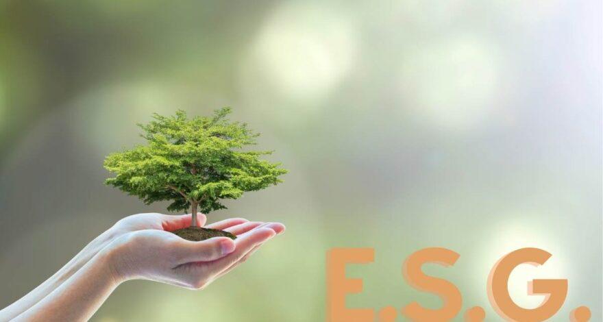 ESG, il mega trend destinato al boom nel 2021